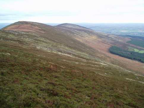 MountainViews.ie Picture about mountain Mount Leinster East Top in area Blackstairs Mountains, Ireland