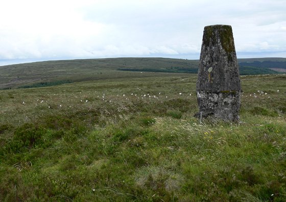 MountainViews.ie Picture about mountain Wolftrap Mountain in area Slieve Bloom, Ireland