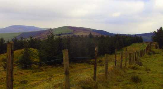 MountainViews.ie Picture about mountain Lackenacreena in area Shannon, Ireland