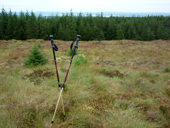 MountainViews.ie Picture about mountain Tullybrack in area Fermanagh/S Tyrone, Ireland