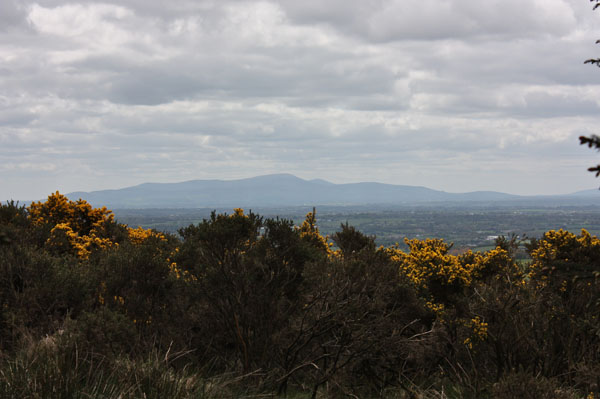 MountainViews.ie Picture about mountain Tinoran Hill in area Dublin/Wicklow, Ireland