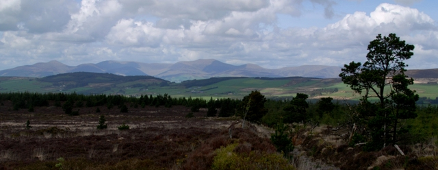 MountainViews.ie Picture about mountain Knockadullaun in area Knockmealdown Mountains, Ireland