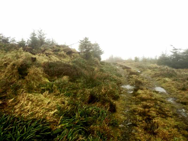 MountainViews.ie Picture about mountain Croghan Kinsella East Top in area Dublin/Wicklow, Ireland