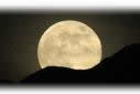 """Full Moon Walks"" from terree Contract pics"