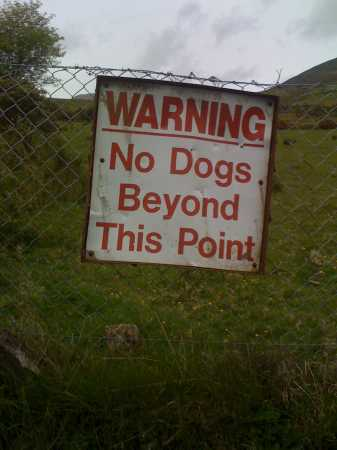 """No dogs allowed!"" from csd Contract pics"