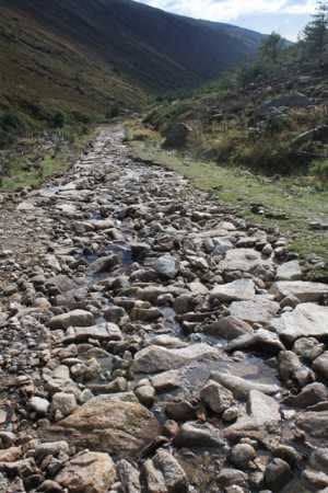 """An acceptable track in Glenmalure"" from wicklore Contract pics"