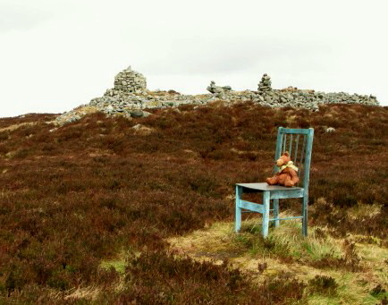 Bronze chair/Teddy bear.