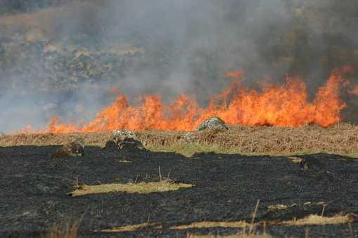 Fire in the Glen of Imaal