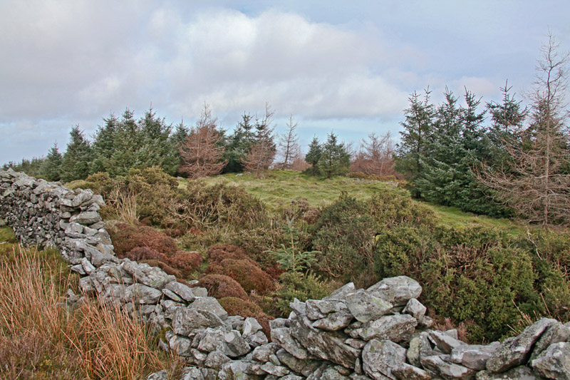 MountainViews.ie Picture about mountain Mount Kennedy in area Dublin/Wicklow, Ireland