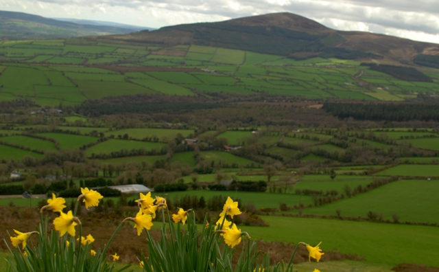 MountainViews.ie Picture about mountain Croghan in area South Midlands, Ireland