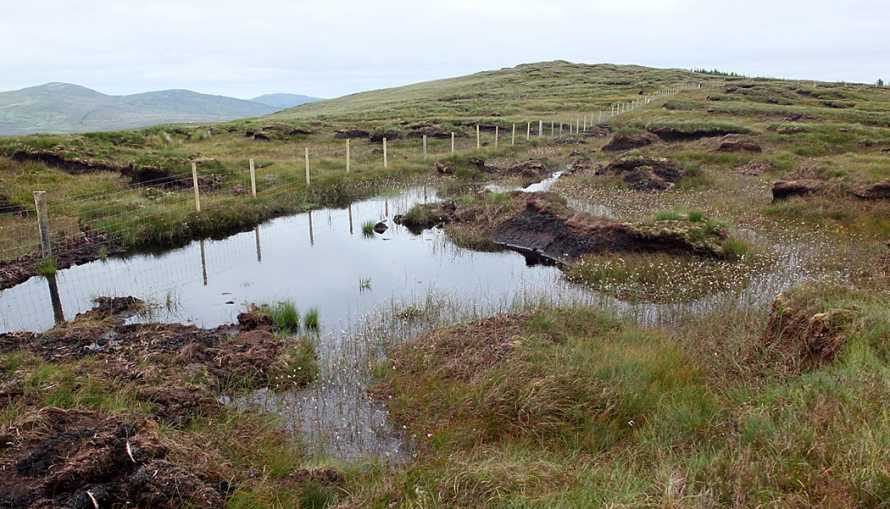 MountainViews.ie Picture about mountain Binswilly in area Donegal NW, Ireland
