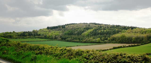 MountainViews.ie Picture about mountain Hewson Hill in area South Midlands, Ireland