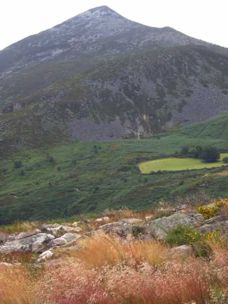MountainViews.ie Picture about mountain Carrigoona Commons East (<i>Carraig Úna Thoir</i>) in area Wicklow, Ireland