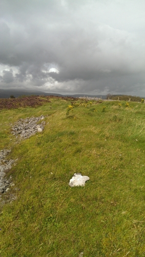 MountainViews.ie Picture about mountain Mucklety Hill in area Ox Mountains, Ireland
