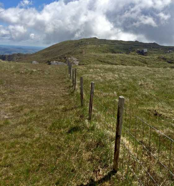 MountainViews.ie Picture about mountain Foilastookeen in area Shehy/Knockboy, Ireland