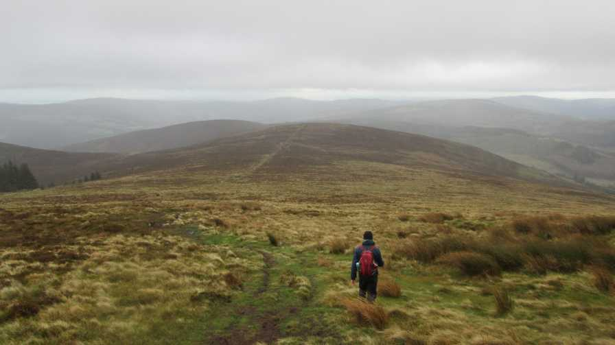 MountainViews.ie Picture about mountain Cullentragh Mountain in area Dublin/Wicklow, Ireland