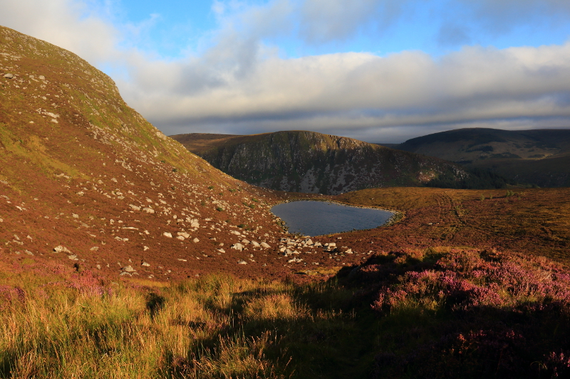 MountainViews.ie Picture about mountain Cloghernagh in area Dublin/Wicklow, Ireland