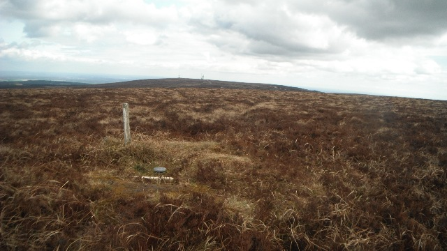 MountainViews.ie Picture about mountain Stillbrook Hill in area Slieve Bloom, Ireland