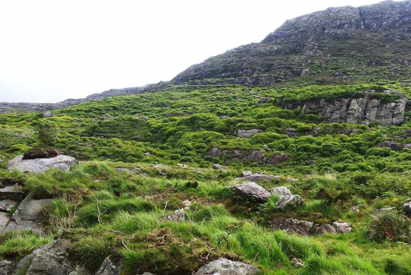 MountainViews.ie Picture about mountain Mothaillín in area Dunkerron Mountains, Ireland