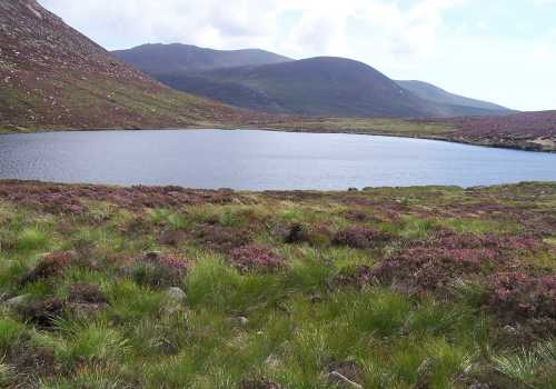 MountainViews.ie Picture about mountain Rocky Mountain in area Mourne Mountains, County Down, Ireland