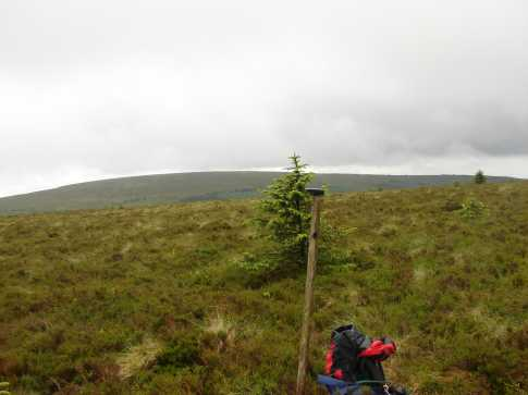 MountainViews.ie Picture about mountain Barcam in area Slieve Bloom, Ireland