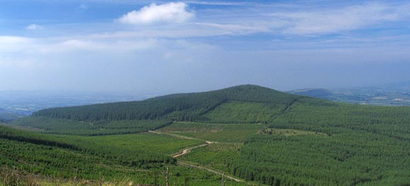 MountainViews.ie Picture about mountain Benard in area Galty Mountains, Ireland