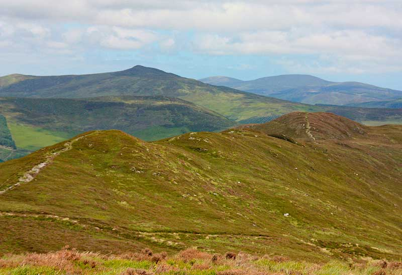 MountainViews.ie Picture about mountain Derrybawn Mountain in area Dublin/Wicklow, Ireland