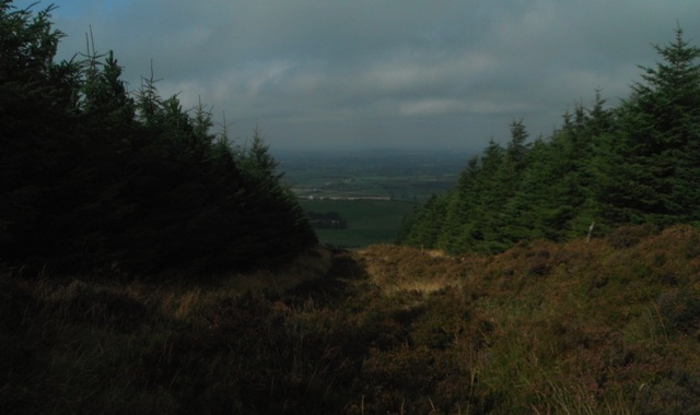 MountainViews.ie Picture about mountain Benduff in area Shannon, Ireland