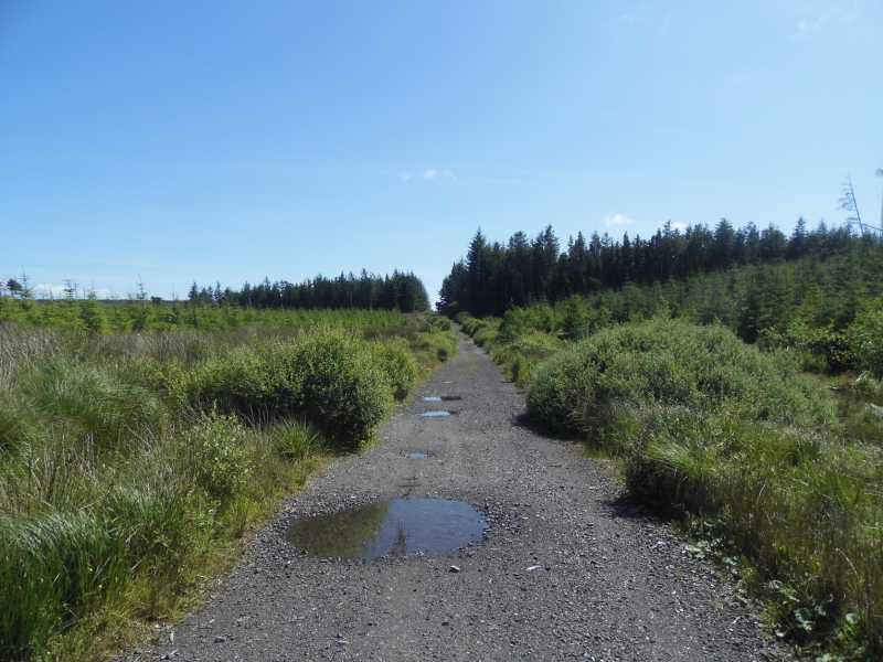 Croaghonagh 451m Hill S Donegal W Tyrone Ireland At