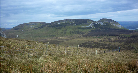 MountainViews.ie Picture about mountain Keelogyboy Mountain in area Dartry Mountains, Ireland