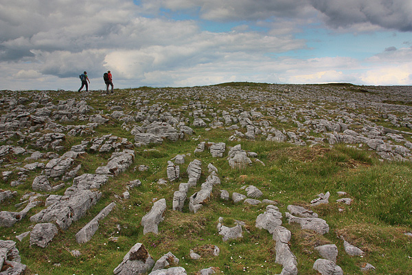 Limestone pavement essays