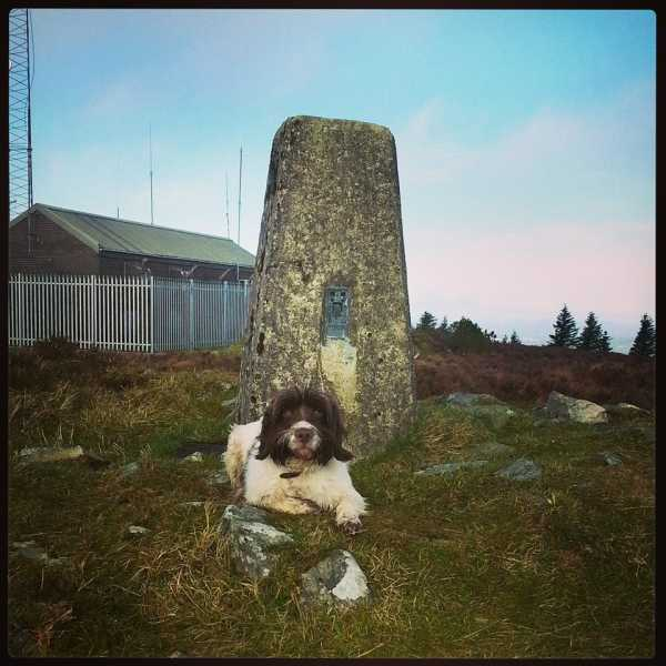 MountainViews.ie Picture about mountain Bessy Bell in area Sperrin Mountains, Ireland