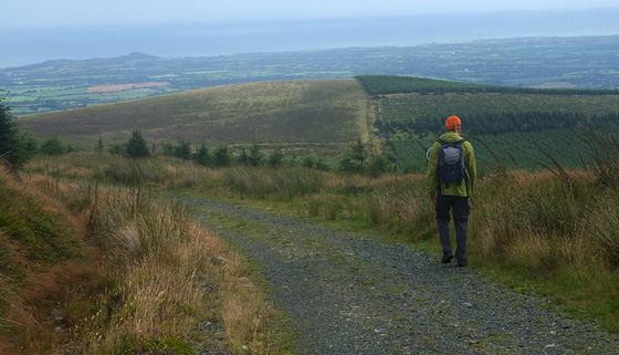 MountainViews.ie Picture about mountain Slievefoore (<i>An Sliabh Fuar</i>) in area Wicklow, Ireland