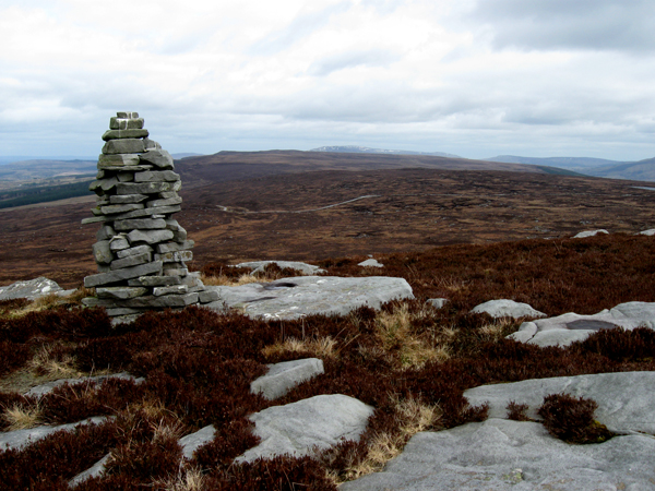 MountainViews.ie Picture about mountain Ballaghnabehy Top in area Dartry Mountains, Ireland
