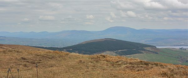 MountainViews.ie Picture about mountain Ballykildea Mountain in area Shannon, Ireland