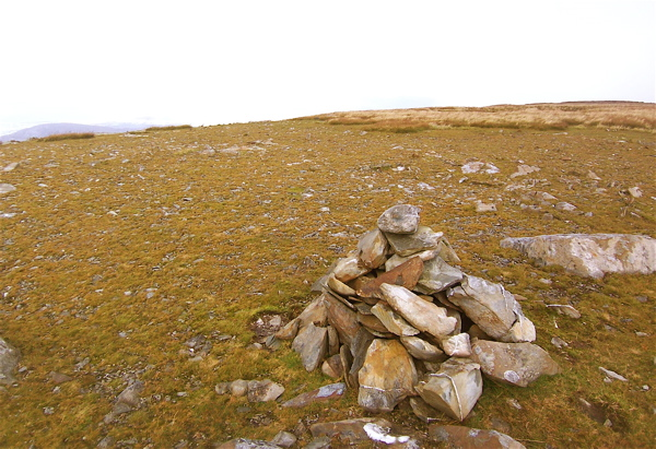 MountainViews.ie Picture about mountain Tievnabinnia in area Sheeffry Hills, Ireland