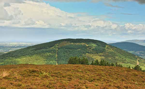 MountainViews.ie Picture about mountain Knockadigeen Hill in area Shannon, Ireland