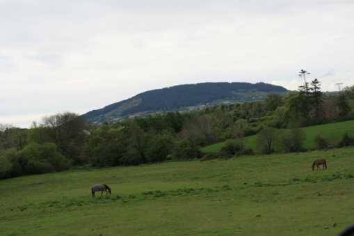 MountainViews.ie Picture about mountain Tara Hill in area North Wexford, Ireland