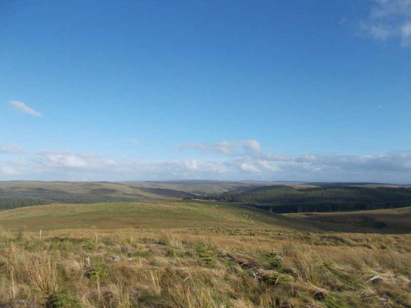 MountainViews.ie Picture about mountain Bryn Garreg-lwyd  in area South-West Wales, Ireland