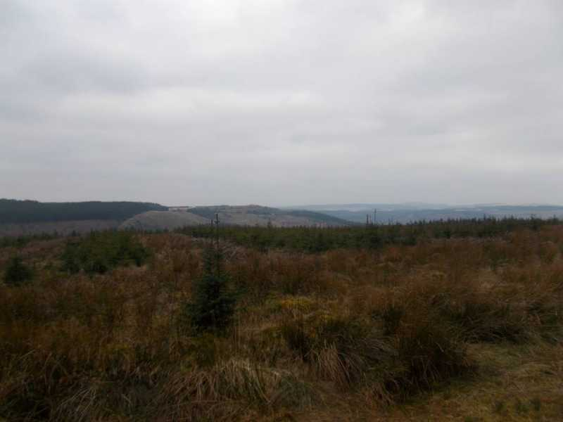 MountainViews.ie Picture about mountain Coed Cae Aberaman in area Neath to Chepstow, Ireland