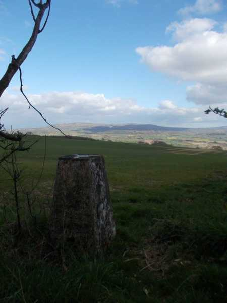 MountainViews.ie Picture about mountain Diddlebury Common  in area Shropshire, Ireland