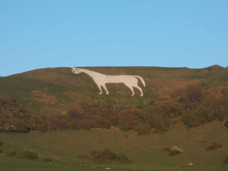 MountainViews.ie Picture about mountain White Horse Hill  in area South Central England, Ireland