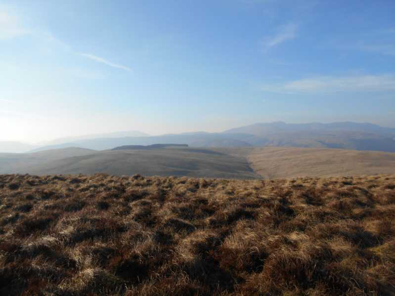MountainViews.ie Picture about mountain Foel Lluestbadlon  in area Bala to Welshpool, Ireland