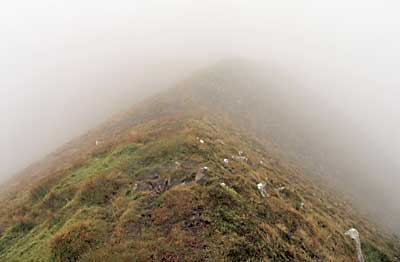 MountainViews.ie Picture about mountain Caherconree in area Slieve Mish, Ireland