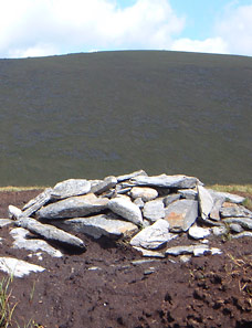 MountainViews.ie Picture about mountain Slievemaan in area Dublin/Wicklow, Ireland