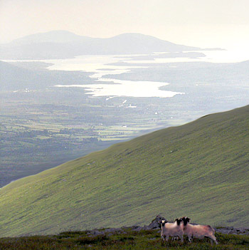 MountainViews.ie Picture about mountain Mullaghnarakill in area Glenbeigh Horseshoe, Ireland