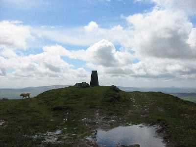 MountainViews.ie Picture about mountain Croaghanmoira in area Dublin/Wicklow, Ireland