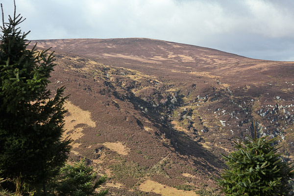 MountainViews.ie Picture about mountain Tonduff (<i>Tóin Dubh</i>) in area Wicklow, Ireland