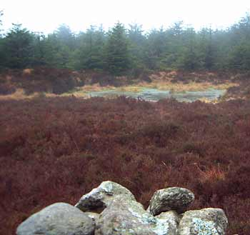 MountainViews.ie Picture about mountain Slieve Maan in area Dublin/Wicklow, Ireland