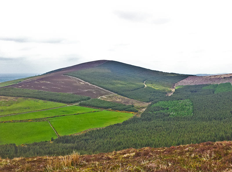MountainViews.ie Picture about mountain Church Mountain (<i>Sliabh gCod</i>) in area Wicklow, Ireland